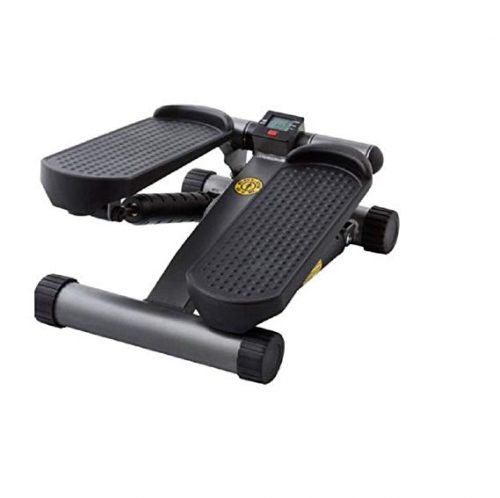 Golds Gym Mini Stepper