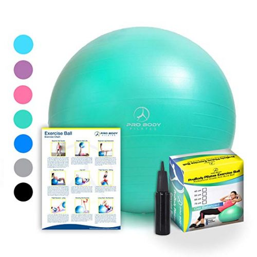 ProBody Pilates Professional Grade Exercise Ball