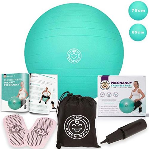 The Birth Ball Pregnancy Exercise Ball